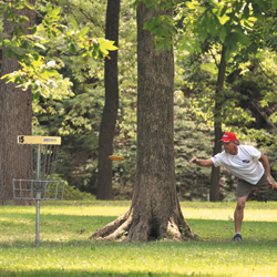 Young man playing disc golf